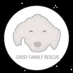 Daisy Family Rescue e.V.